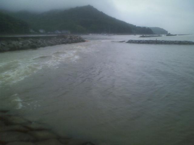 コーヒーブラウンな海