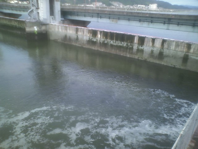 今日の河口2